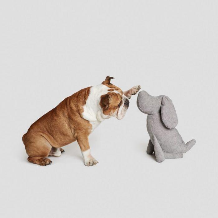cloud7 deco dog johan tweed gray dog